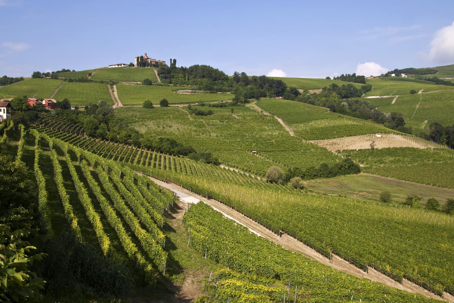 Paesaggio-langhe-cover